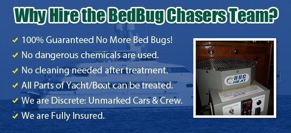 Philly Bed Bug Exterminator , Chemical Free Bed Bug Treatment Philly , Get Rid of Bed Bugs Philly , Bed Bug Spray Philly , What to do Bed Bugs look like Philly , Kill Bed Bugs Philly , Bed Bug Treatment Philly , Bed Bug Dog Philly , How to get Rid of Bed Bugs Philly , Bed Bug Heat Treatment Philly , Bed Bug Eggs Philly , Bed Bug Exterminator Philly ,